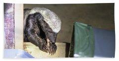 Honey Badger South Africa Beach Towel