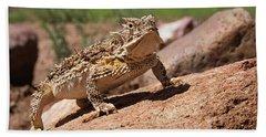Horny Toad Beach Sheet