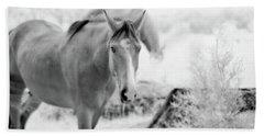 Horse In Infrared Beach Sheet