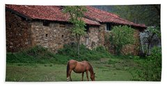 Horse In The Field Next To A Rural House Beach Sheet