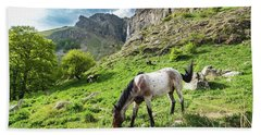 Beach Towel featuring the photograph Horse On Balkan Mountain by Milan Ljubisavljevic