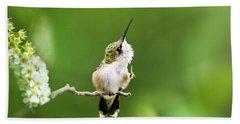 Hummingbird Flexibility Beach Towel
