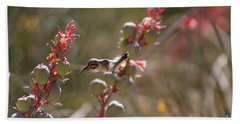 Hummingbird Flying To Red Yucca 1 In 3 Beach Towel