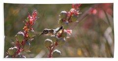 Hummingbird Flying To Red Yucca 1 In 3 Beach Sheet