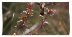 Hummingbird Flying To Red Yucca 3 In 3 Beach Towel