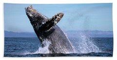 Humpback Breaching - 01 Beach Towel