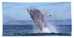 Humpback Breaching - 02 Beach Sheet