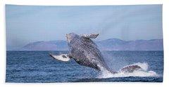 Humpback Breaching - 03 Beach Towel
