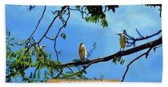 Ibis Perch - Virgin Nature Series Beach Towel