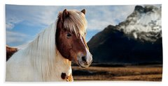 Icelandic Horse Beach Sheet