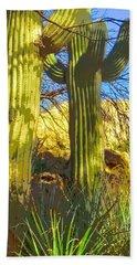 In The Shadow Of Saguaros Beach Towel