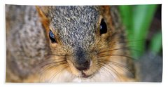 In Your Face Fox Squirrel Beach Towel
