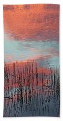 Inspiration For A Snowbird Beach Towel