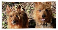 Jack And Lily 2 Beach Towel