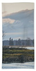 January Skies Beach Towel