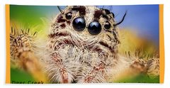 Jumping Spider Colonus Hesperus Beach Towel