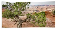 Juniper Over The Canyon Beach Towel