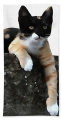 Just Chillin Tricolor Cat Beach Towel