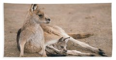 Beach Towel featuring the photograph Kangaroo Outside by Rob D Imagery