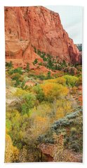 Kolob Canyon 2, Zion National Park Beach Sheet