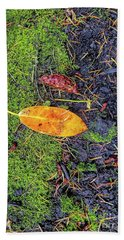 Beach Towel featuring the photograph Leaf And Mossy by Jon Burch Photography