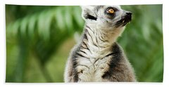 Beach Towel featuring the photograph Lemur By Itself Amongst Nature. by Rob D Imagery