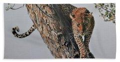 Leopard In Tree Beach Sheet