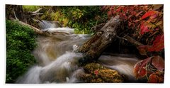 Little Deer Creek Autumn Beach Towel