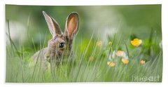 Little Hare Beach Towel