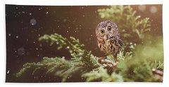 Little Owl Beach Sheet