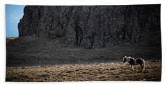 Lone Horse In Iceland Beach Towel