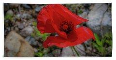Lone Red Flower Beach Sheet