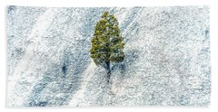 Lonely Tree Beach Sheet