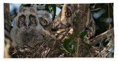 Long-eared Owl And Owlets Beach Towel