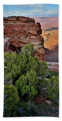 Looking East From Grand View Point In Canyonlands Beach Towel