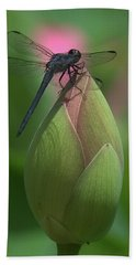 Lotus Bud And Slaty Skimmer Dragonfly Dl0006 Beach Towel