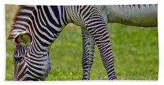 Love Zebras Beach Sheet