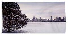 Lovely Winter Chicago Beach Sheet