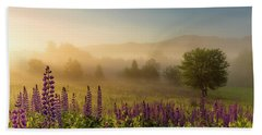 Beach Towel featuring the photograph Lupine In The Fog, Sugar Hill, Nh by Jeff Sinon