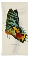 Madagascan Sunset Moth  Urania Riphaeus  Illustrated By Charles Des Salines D' Orbigny  1806-1876 2 Beach Towel