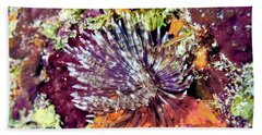 Magnificent Feather Duster Beach Towel