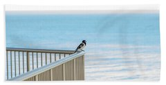 Magpie In Waiting Beach Towel