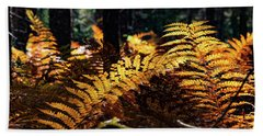 Maine Autumn Ferns Beach Towel