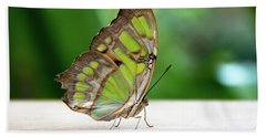 Malachite Butterfly Profile Beach Towel