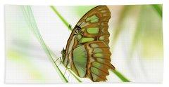 Malachites Butterfly Beach Towel