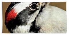 Male Downy Woodpecker Beach Towel