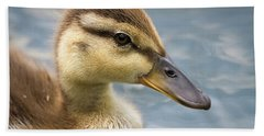 Mallard Duckling Beach Towel