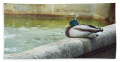 Mallard Resting On The Fountain Of The Fallen Angel In The Retiro Park - Madrid, Spain Beach Sheet