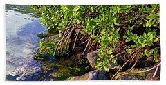 Mangrove Bath Beach Towel