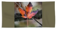 Beach Towel featuring the photograph Maple 1 by Michael Arend